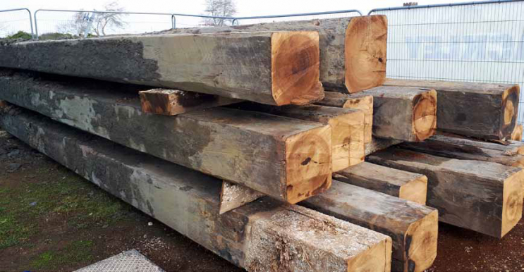 Sections of the Pier's Greenheart piles reclaimed for future use